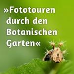 »Fototouren durch den Botanischen Garten«